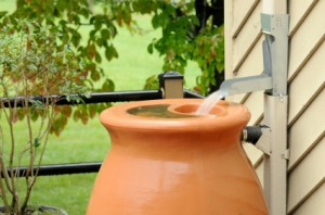 Rain Barrel Small