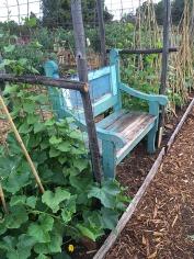 Jannine;s bench