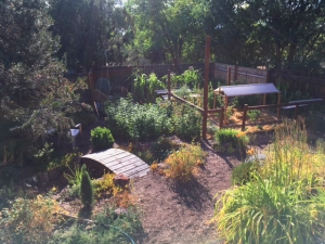Robert and Michelle garden