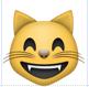 t-emoji